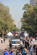 Chapultepec towards the Angel