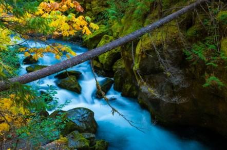 South Umpqua River - Umpqua National Forest, Oregon