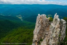 North Fork Mountain - Monongahela National Forest
