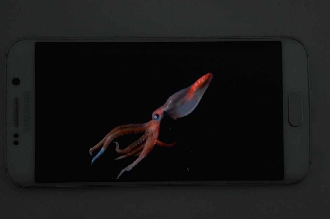 Galaxy S6 Edge Ecran Super Amoled