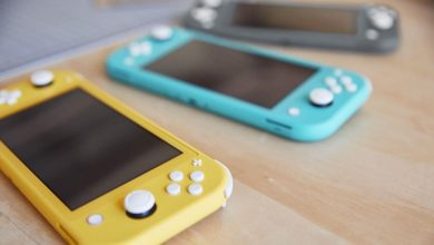 Nintendo switch lite color