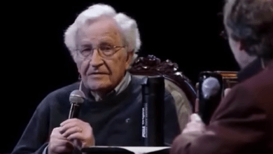 Photo of What's Your Capacity for Language? See What Chomsky Thinks.