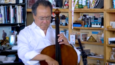 Photo of Yo-Yo Ma on Learning Incrementally. Beautiful.