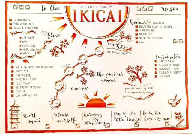 Ikigai Visual Synopsis Pleasure and Meaning