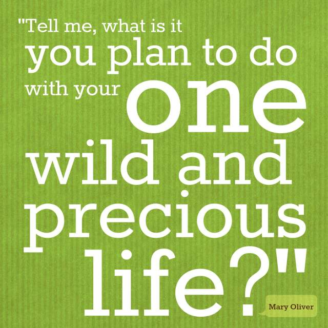 """""""Tell me what is it you plan to do with your one wild and precious life?"""" ~ Mary Oliver"""