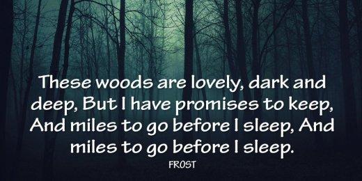 robert frost woods