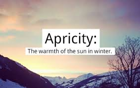 Apricity - The warmth of the sun in winter.