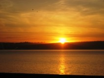 Sunset by the Water by Tommia Wright