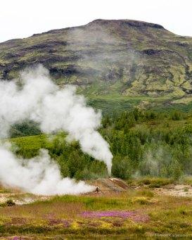 Geysir Hot Spring Area