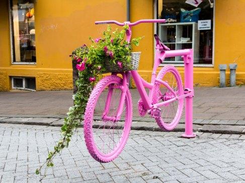 Bicycle gate in Reykjavík