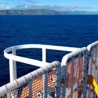 Reisebericht Neuseeland: Auf der Nordinsel rumfahren!