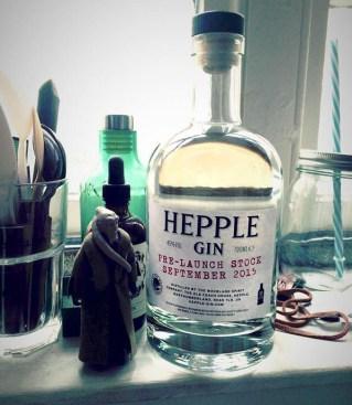 Tomoka_Hepple_Gin_2