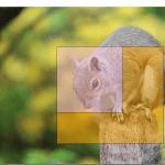 Pythonで好きな場面をクロップできるソフトを作ってみた::マウスで簡単にエリア選択できます