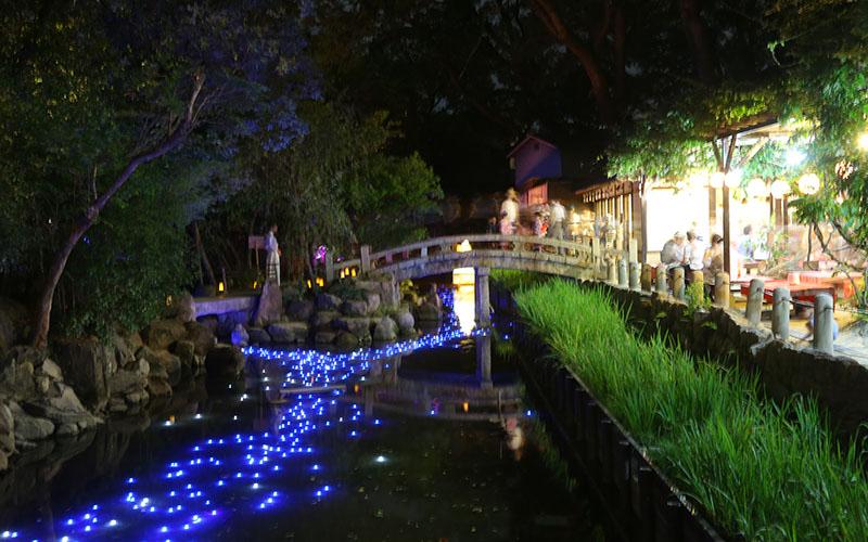 特集 西宮神社 夏えびす(177号)