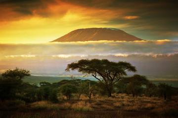 #26 借金してアフリカ最高峰キリマンジャロ登山に行った話-後編