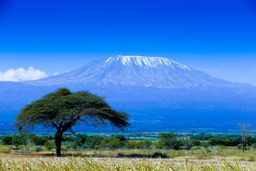#25 借金してアフリカ最高峰キリマンジャロ登山に行った話-前編