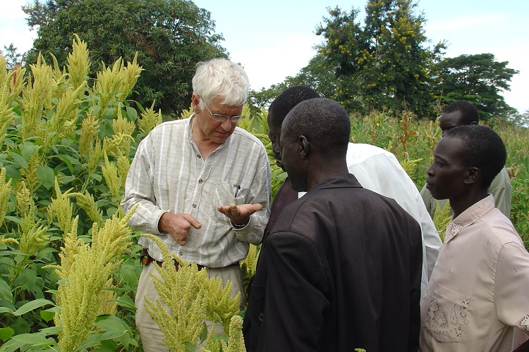 Sid Dialoging with Farmers in Amaranth Field: How to know when its ripe