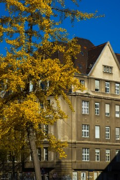 Zeiss autumn @ Volksgarten Cologne.