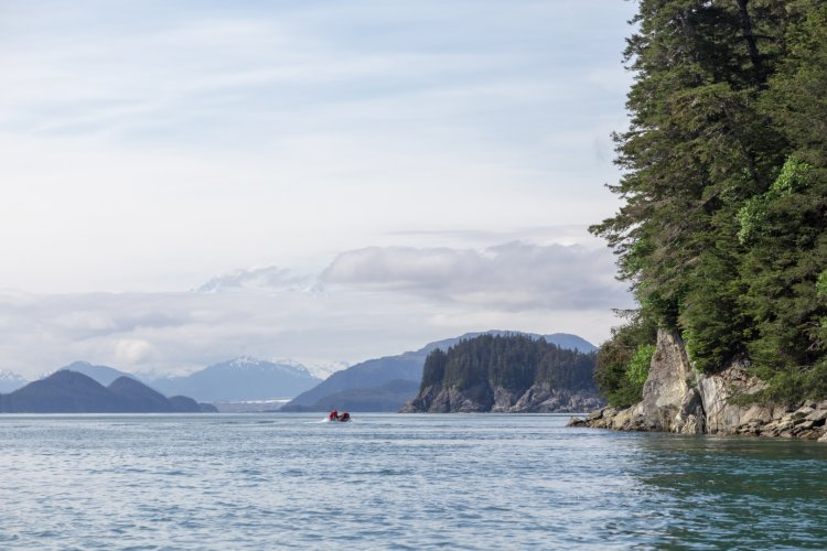 Tom Scherlis Alaska-0402