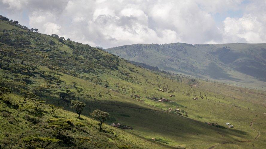 Tom Scherlis Tanzania-3244