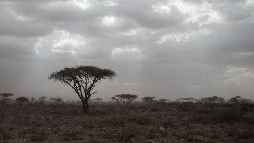 Tom Scherlis Tanzania-3487