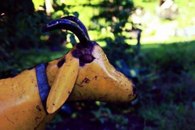 metallic-goat