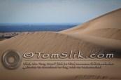 Glamis Dune Trip 11-11-11-214