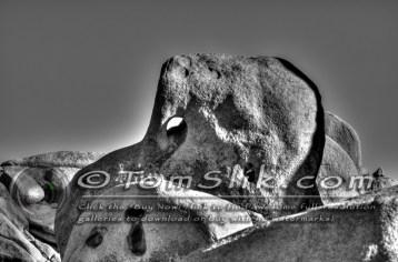 Joshua Tree Astro-Photograpy 11-2-2013 0176