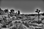 Joshua Tree Astro-Photograpy 11-2-2013 0338