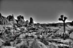 Joshua Tree Astro-Photograpy 11-2-2013 0338