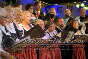 German American Society Spring Choir 5-15-2016 0038