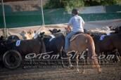 Lynn & Sam Team Cow Sorting 5-18-2016 0019
