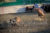 Lynn & Sam Team Cow Sorting 5-18-2016 0020