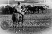 Lynn & Sam Team Cow Sorting 5-18-2016 0058