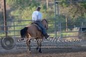 Lynn & Sam Team Cow Sorting 5-18-2016 0093