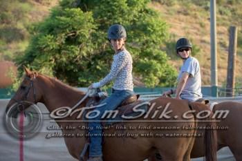 Lynn & Sam Team Cow Sorting 5-18-2016 0096
