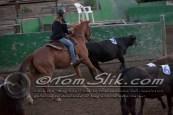 Lynn & Sam Team Cow Sorting 5-18-2016 0234