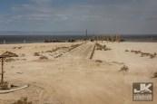 Tierra Del Sol Desert Safari 2018 0551