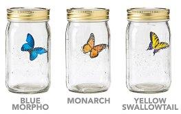 Butterfly in a Jar Gift