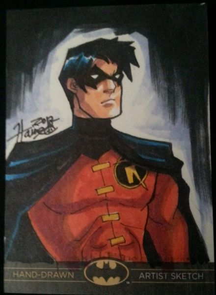 Version of Robin by Hanie Mohd