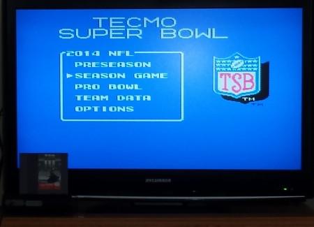 Tecmo Super Bowl 14