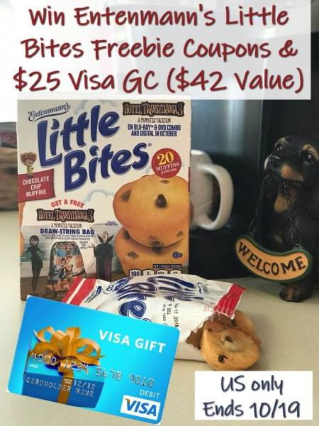 $25 Visa Gift Card Giveaway - Enter to win! Ends 10/19