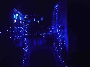 Picture of our LED outdoor Christmas lights. house south porch wheelchair ramp.