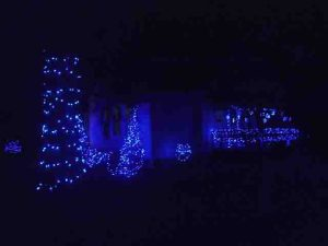Picture of outdoor Christmas lights, house front south west view. Showing bushes, spruce trees, and porch railing adorned with glowing LED strings.
