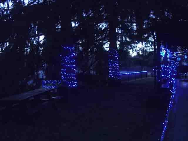 Blue Led Christmas Lights Decorating Outdoors Tom S Tek Stop