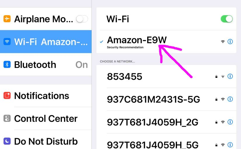 Connect Alexa to New WiFi, How To