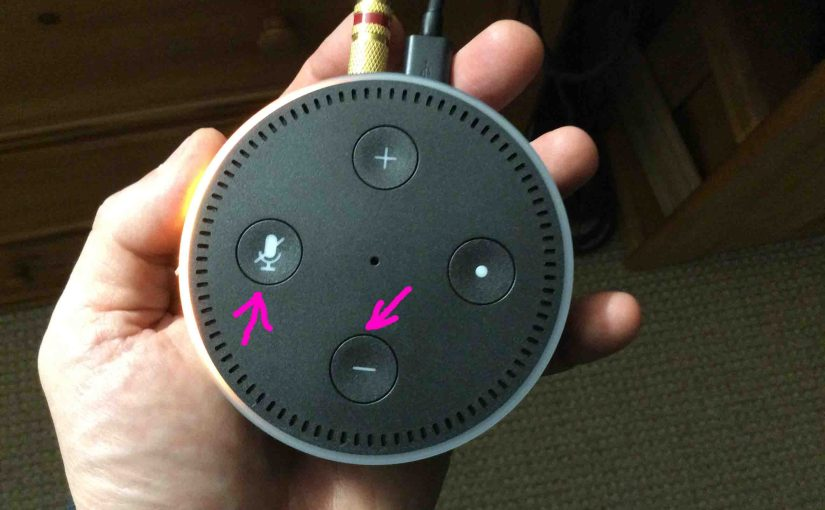 Echo Dot 2 Factory Reset Instructions
