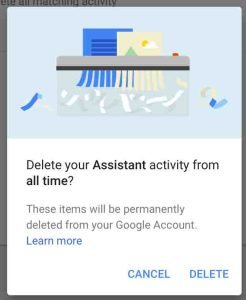 Picture of the Google Home app on iOS, displaying the -Delete Activity Confirmation- dialog box.
