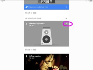 Picture of the Google Chromecast Audio receiver as it appears in the Google Home app, with its device control menu button circled.