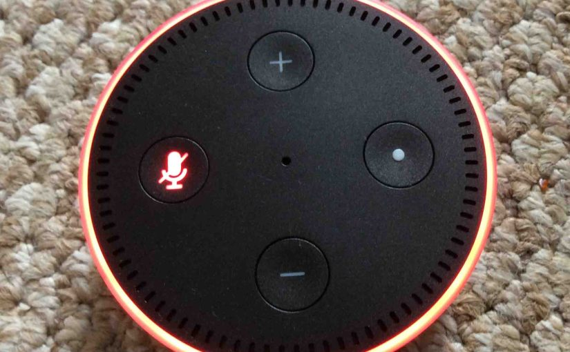 Reconnect Echo Dot to New WiFi Network, How To Instructions